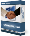 Image of WEBGIO Business Consulting Service